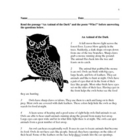 Guided Reading Lesson - Grade 3 -An Animal of the Dark / Who?