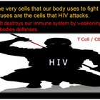 HIV Virus, AIDS, Sexually Transmitted Diseases Lesson