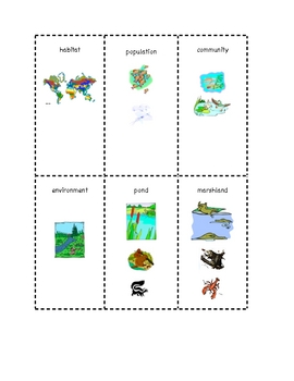 Habitat Flashcards  VA SOL 3.6 (PDF version)