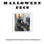 Halloween PECS Flash cards
