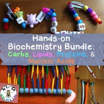 Hands-on Biochemistry Bundle: Carbohydrates, Lipids, Proteins, and Nucleic Acids
