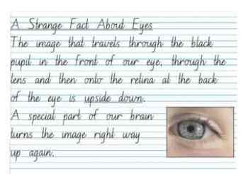 Handwriting paragraph for whiteboard - About eyes