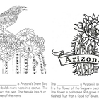 Happy 100th Birthday Arizona!!!