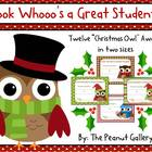 "Happy ""Owlidays"" (Christmas Owl Theme Awards)"