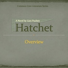 Hatchet Overview