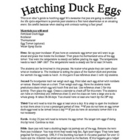 Hatching Duck Eggs Unit