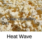 Heat Wave Vocabulary Quiz
