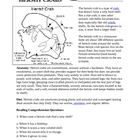 Hermit Crab Reading Comprehension Sheets  FREE