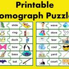 Homograph Puzzle Activity (multiple meaning words)