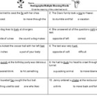 Homographs/ Multiple Meaning Words Assessment