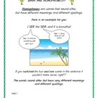 Homophone Lesson &amp; Activity Packet