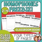 Homophones Class Book or Center Activity ~~FREE~~