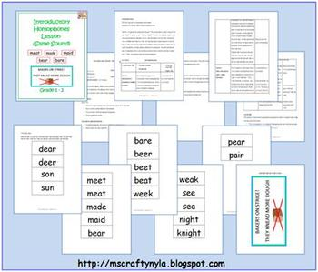 Homophones Lesson Plan (Same Sound) Plus Word Cards