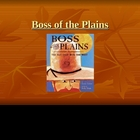 Houghton Mifflin Vocabulary PPT Boss of the Plains