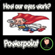 How Do our Eyes Work? PowerPoint
