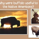 How Native Americans used the different Parts of Buffalo P