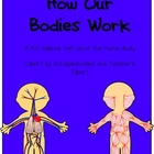 How Our Bodies Work: K/1 Human Body Science Unit