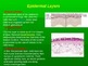 Human Anatomy and Physiology: The Integumentary System