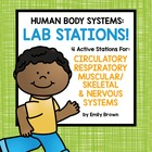 Human Body Lab Stations!