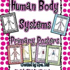 Human Body Systems Primary Posters