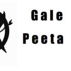 Hunger Games Voting