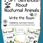 I SPY Sentences About Nocturnal Animals!