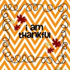 I am Thankful...