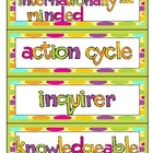 IB Primary Years Programme Word Wall