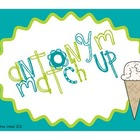Ice Cream Antonym Matching