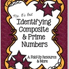 Identifying Composite and Prime Numbers