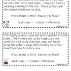 Inferencing with Animal Facts