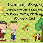 Insects &amp; Lifecycles MEGA Unit for Literacy, Math, &amp; Scien