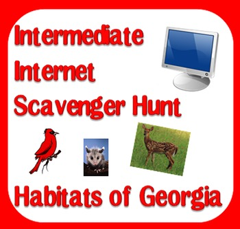 Internet Scavenger Hunt - Third Grade Habitats of Georgia