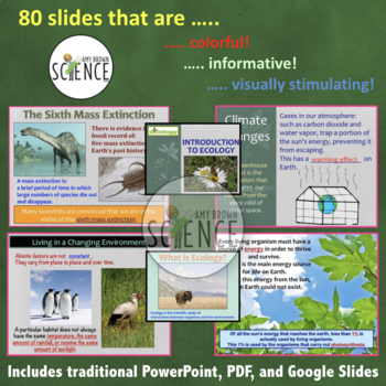 Introduction to Ecology PowerPoint with Notes for Teacher