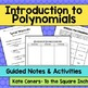 Introduction to Polynomials
