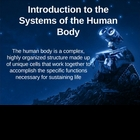 Introduction to Systems of the Human Body