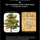 Iroquois Constitution &amp; U. S. Constitution: An Analysis