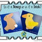 Is it a Bunny or is it a Duck? Craft