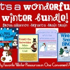 It's a Wonderful Winter Bundle!