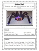 Itsy Bitsy Spider Packet- Language Arts, Math,  Art, Science
