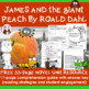 James and the Giant Peach Reading Comprehension Activity Guide