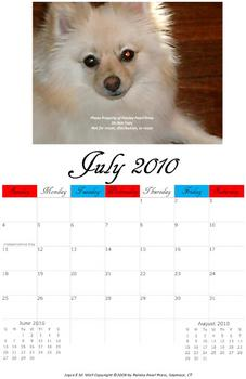 Journey through 2010 Calendar (Notebook Calendar)