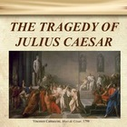 Julius Caesar~  NEW navigation index and graphic organizers