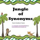 Jungle of Synonyms