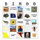 Kansas Bingo Game