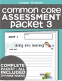 Kindergarten Common Core Standards Assessment Packet - Quarter 3