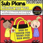 Kindergarten Sub Plans, A Bag of Tricks for When You Are Sick!