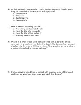 Kingdom Protista - Protists Quiz 1