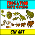 Lab doodles: Frog lifecycle