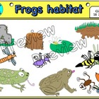 Lab doodles: Frogs habitat